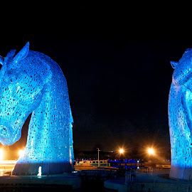 The Kelpies by Graham Hill - Buildings & Architecture Statues & Monuments ( opening ceremony, lights, the kelpies, equine statues, scotland, falkirk, dark, 30m, tallest, helix park,  )