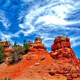 How red is Red Canyon by Lynne Sanderson - Landscapes Caves & Formations