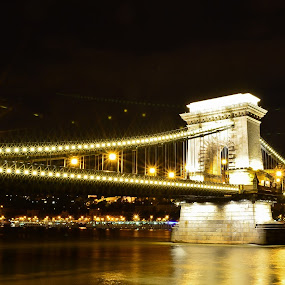 Chain Bridge by Péter Nagy - Buildings & Architecture Bridges & Suspended Structures ( chainbridge, budapest, lamp, night, bridge, danube )