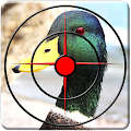 Game Sniper Duck Hunting Season 3D apk for kindle fire