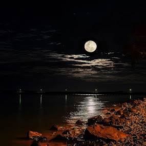 July Full Moon by Ellen Foulds - Landscapes Starscapes ( urangan pier, night scene, full moon, landscape, moonlight )