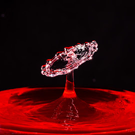 by Alick McWhirter - Abstract Water Drops & Splashes ( red, macro, splashart, colour, drops, droplets, photoshop, water, flash, gel )