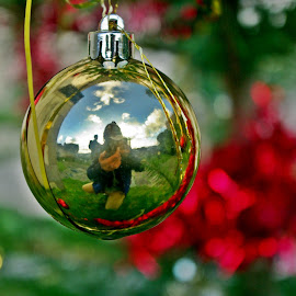 Cheese by Ciprian Apetrei - Public Holidays Christmas ( reflection, christmas, brittany, bokeh, globe )