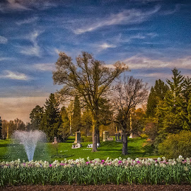 Mooney Fountain at Spring Grove by Pat Lasley - City,  Street & Park  Cemeteries ( spring grove, waterscape, fountain, cemetery, landscape, flowers )