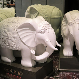 Twin Elephant Statuettes by Dennis  Ng - Artistic Objects Antiques (  )