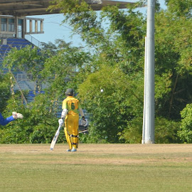 Bowled out  by Sharmila Narwani - Sports & Fitness Cricket ( nagico cricket, balmain, jamaica vs barbados, 50 overs match )