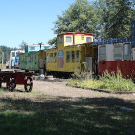 Train museum 4 by Christopher Barker - Transportation Trains ( train, train cars, antique )
