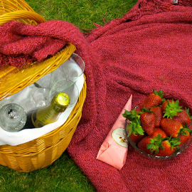 Picnic by Viive Selg - Food & Drink Alcohol & Drinks (  )