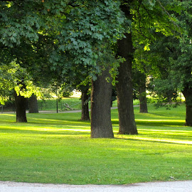 Rålambshovsparken by Viive Selg - City,  Street & Park  City Parks