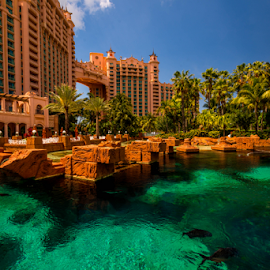 Atlantis by Joseph Law - Buildings & Architecture Office Buildings & Hotels ( clear, ponds, blue sky, fish, trees, hotel, paradise, bahamas, atlantis )