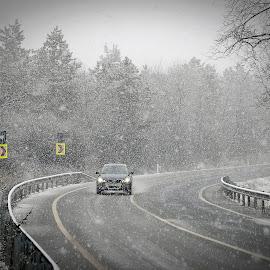 winter on the road by Gabi Radoi - Transportation Automobiles ( winter, automobile, snow, trees, road )