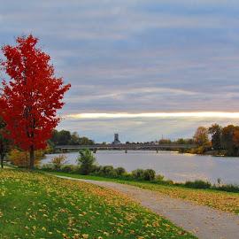Early Autumn At Pottoff Park  by Howard Sharper - City,  Street & Park  City Parks ( autumn colors, cityscape, autumn leaves, riverside, landscape )