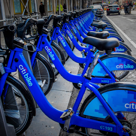 Bikes by Joseph Law - Transportation Bicycles ( blue, bikes, travel, new york city, rental, street scenes, city )