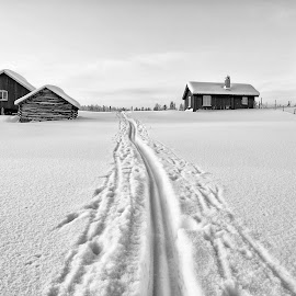 Valdres by Ole Walter Sundlo - Landscapes Mountains & Hills ( winter, cold, winterscape, cross country, valdres, landscape, norway )
