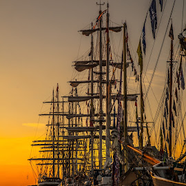 Tall ships  by Hafsteinn Kröyer Eiðsson - Transportation Boats ( harbour, sail, reflections, mast, ship, high, reflect, white, golden, tall, large, race, reflection, old, black, shade, boats, brown, transportation, orange, ships, masts, ocean, old ship, tall ship, sunset, norway, shadows, sailing, colorful,  )