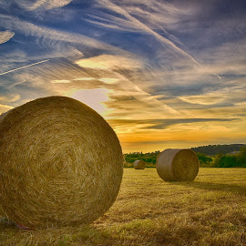 Sunset On The Field by Marco Bertamé - Landscapes Prairies, Meadows & Fields ( field, painted, sky, blue, sunset, condensation trail, sun-dried, yellow, hay bale, sun )