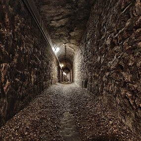 Les Catacombes by Andrew Halpern - Buildings & Architecture Public & Historical