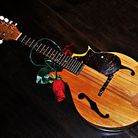 Beautifully Hand Crafted by Christy Stanford - Artistic Objects Musical Instruments ( music, rose, craft, mandolin, instrument )