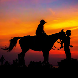The Magnificent Horse-Ride by Pinkesh Modi - Landscapes Sunsets & Sunrises ( colorful, silhouette, colors, horse, beach, landscape, people, colours, colour, horseback, color, sunset, landscape photography, landscapes, man )