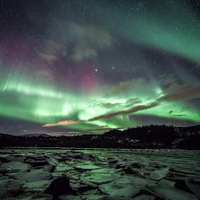 aurora over ice by Benny Høynes - Landscapes Starscapes ( canon, 5dmk2, ice, aurora, boreoalis, frozen, bennyhoynes )