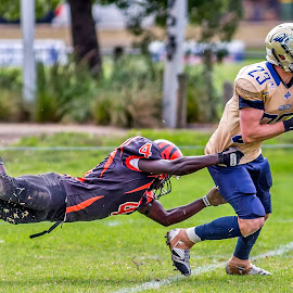 Gridiron Victoria by John Torcasio - Sports & Fitness American and Canadian football ( action, sports, tackle, team, gridiron victoria )