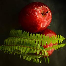 The Apple by Prasanta Das - Food & Drink Fruits & Vegetables ( fern, apple, composition )