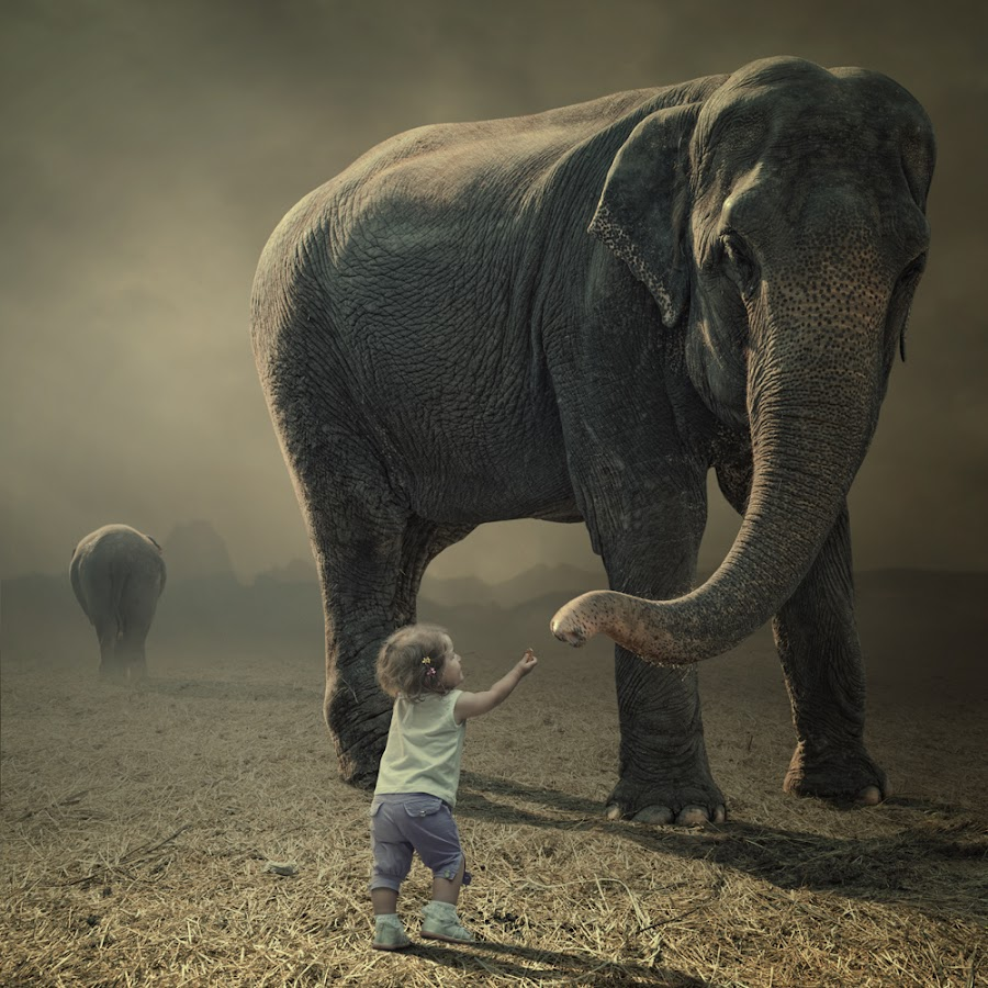 by Caras Ionut - Digital Art Things ( http://www.carasdesign.ro/tutorials )