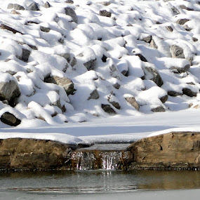 Snowy Rocks by June Morris - Nature Up Close Rock & Stone ( nature, snowy, stone, rock, up, close )