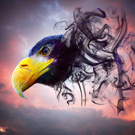 Smoke Eagle by Ad Spruijt - Digital Art Animals