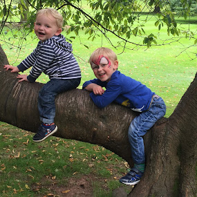 Boys on a tree by Vicki Clemerson - Babies & Children Child Portraits ( tree, family, boys, smiles, smiling, aboy,  )