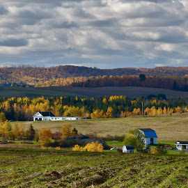 Family Farm by Gilman Michaud - Landscapes Prairies, Meadows & Fields