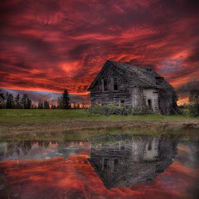 Vine House Puddle by Eric Demattos - Buildings & Architecture Decaying & Abandoned ( reflection, sunset, cottage, eric demattos, puddle, sunrise, frozen )