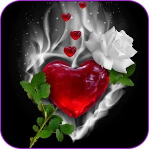 Flowers Gifs And Roses Live Wallpapers For PC / Windows 7/8/10 / Mac – Free Download