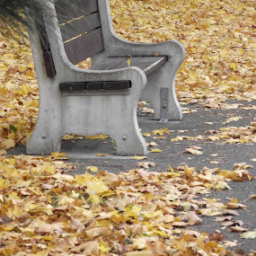 by Ginger Fisher - City,  Street & Park  Neighborhoods