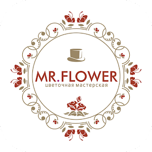 Mr. Flower | Иваново for Android