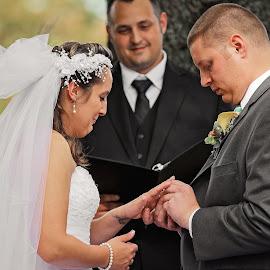 Wedding Day by Tony Bendele - Wedding Ceremony ( love, happy, wife, wedding, husband, bride, people, groom )