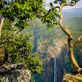 Simlipal by Dale Youngkin - Landscapes Mountains & Hills ( park, waterfall, sanctuary, india, simlipal,  )