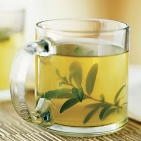 Lemon Verbena and Mint Tisane
