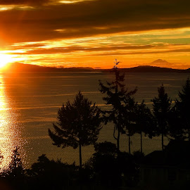 Sunrise, Salish Sea by Campbell McCubbin - Landscapes Sunsets & Sunrises ( mountain, mt. baker, gold, sunrise, salish sea )