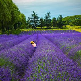 Selfie in Lavender Field by Arif Sarıyıldız - Landscapes Prairies, Meadows & Fields ( provence, selfie, france, colourful, purple flowers, travel, lavender, landscape )