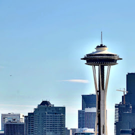 Seattle Space Needle  by Trisha Hochreiter - Buildings & Architecture Public & Historical