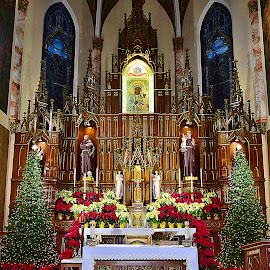 Parish Of Our Lady Of Czestochowa, Brooklyn NY by Andrew Piekut - Public Holidays Christmas