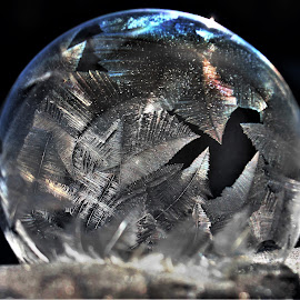 Almost Frozen by RichandCheryl Shaffer - Artistic Objects Other Objects (  )