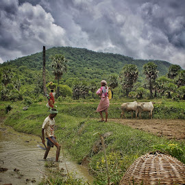 Beautiful monsoon by Santu Santikary - People Street & Candids ( #beautifulpurulia, #beautifulbengal, #beautifilmonsoon )