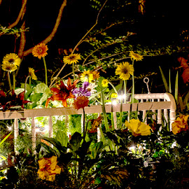 Life & Death by Jonathon Ahhee - Artistic Objects Other Objects ( lights, bassinett, crib, nighttime, flowers )