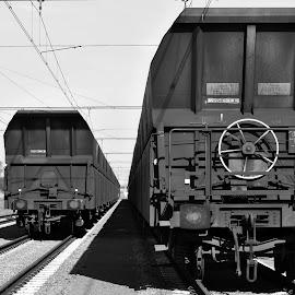 Trainme by Paula NoGuerra - Transportation Trains ( train tracks, black and white, train, tracks, transportation )