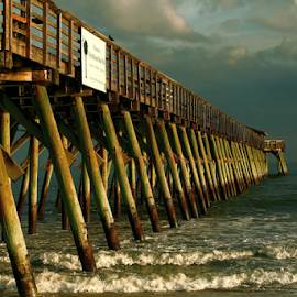 Myrtle Beach Park by Nancy Merolle - Buildings & Architecture Bridges & Suspended Structures ( sand, atlantic ocean, myrtle beach park, park, waves, tide, sea, ocean, wharf, dock, myrtle beach )