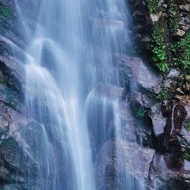 Rimbi waterfalls. by Sambit Bandyopadhyay - Nature Up Close Water
