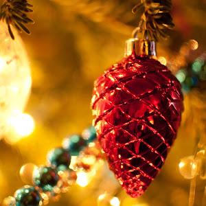christmas stock photos tree-22.jpg