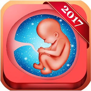 Pregnancy Baby Weekly Tracker For PC